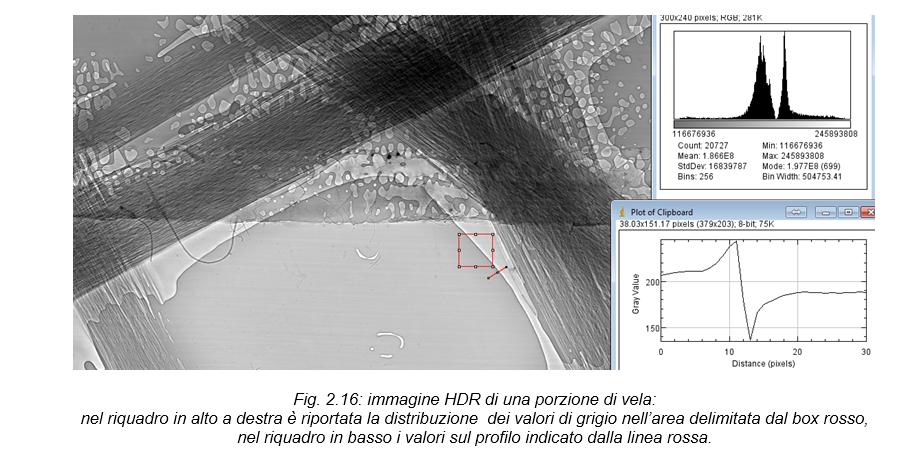 Sincrotrone analisi immagine micro