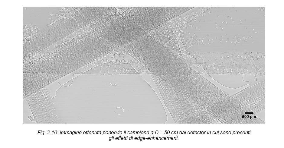Sincrotrone immagine micro